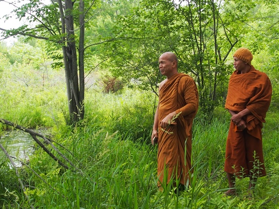 Luang Por Jundee (L) and Ajahn Sek (R) take a look on of Tisarana's marshes